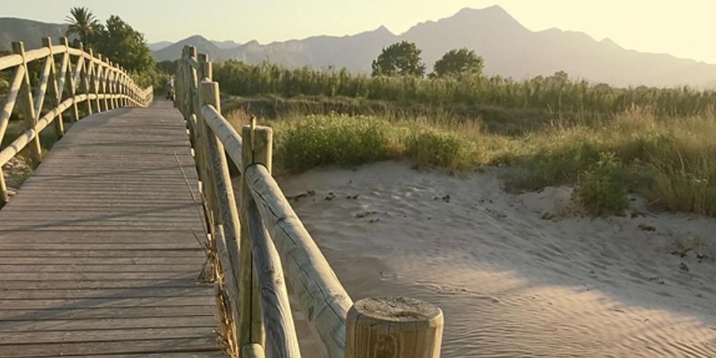 arena y naturaleza